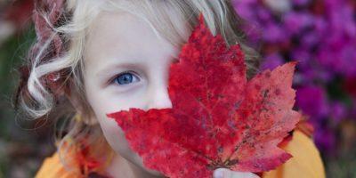 Дослідження «Орієнтованість бізнесу на підтримку сімейних цінностей та прав дитини»